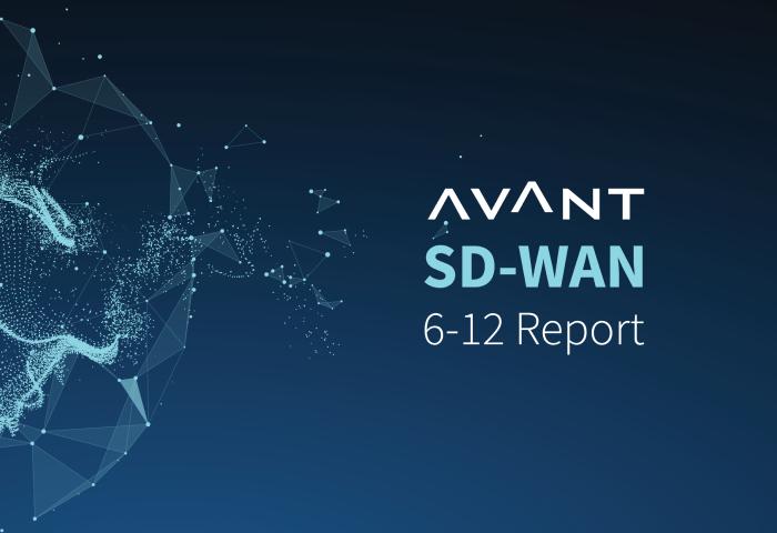 Avant SD-WAN Report