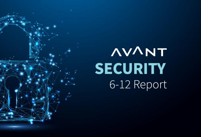 Avant Security Report